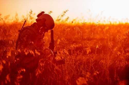 טיפול ב - PTSD